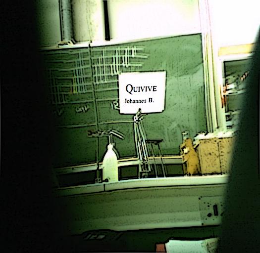Coverbild von Quivive