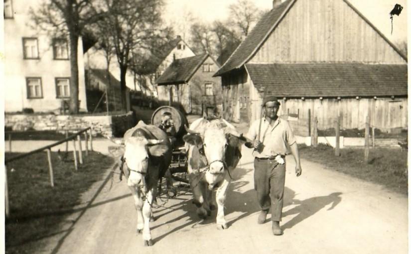 Gülle muss weg! (Hermann Flaig auf der Eschbronner Straße in Lackendorf). [Seite 43]
