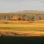Westblick: Schwarzwald