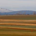Landwirtschaftliche Streifen
